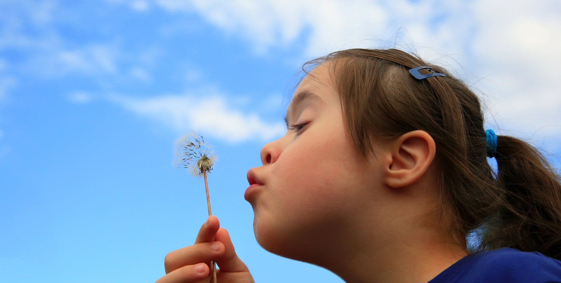 a kid blowing flower